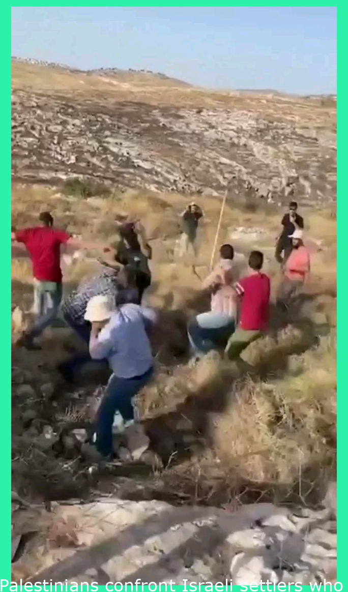 Palestinians confront Israeli settlers who came to seize their lands in the village of Nillin to the west of Ramallah
