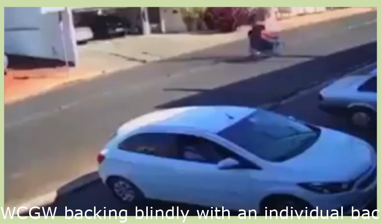 WCGW backing blindly with someone backing across the street too.