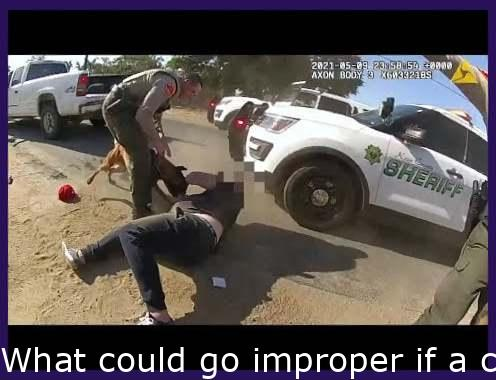 What could go wrong if a cop accidentally releases a K-9