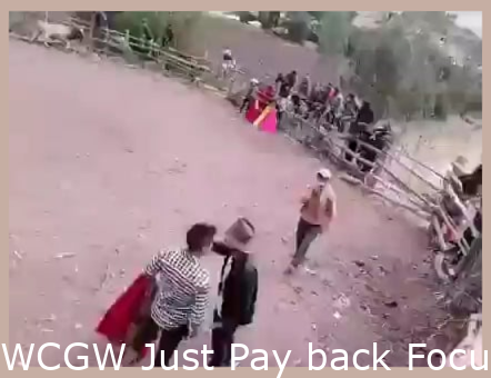 WCGW Just Pay Attention